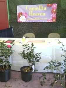 Flower show at North FL Fair- 11-09-13- moto_0377