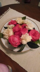 Camellia Easter- 2014-19409
